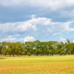 Features of Omaha and Council Bluffs Land That Will Prove to Make Buying a Good Investment