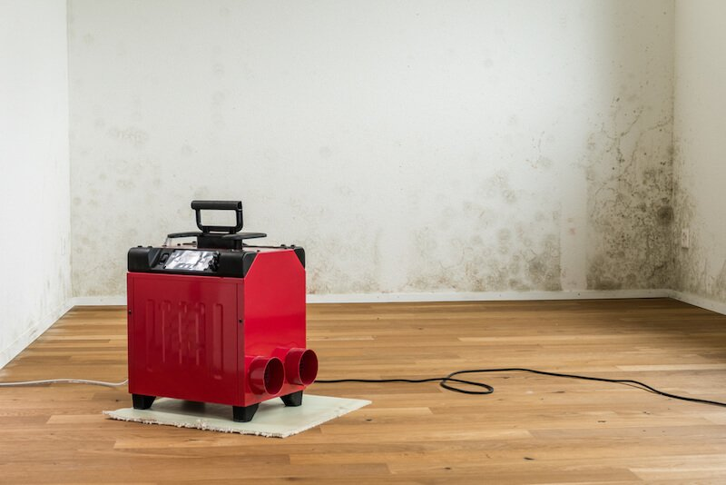 Cleaning with a dehumidifier