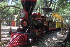 Texas Direct Home Buyers Cedar Rock Train in Leander