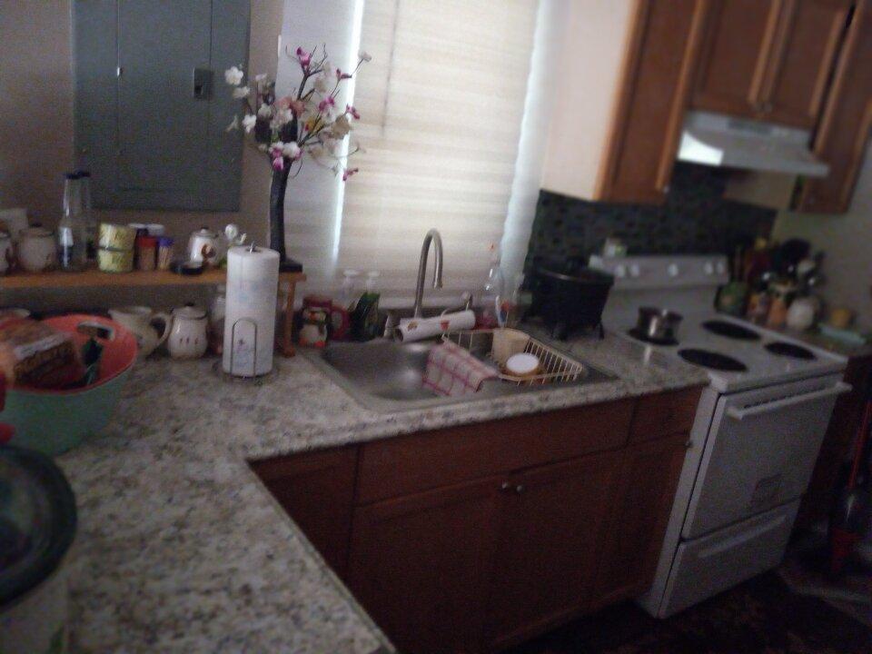 754 alma ave kitchen sink