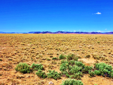 land for sale in costilla colorado