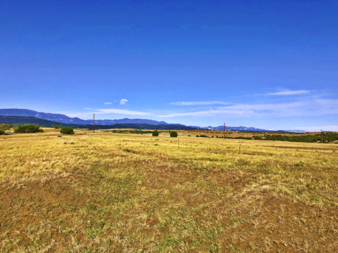 land for sale in colorado city