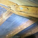 Sell a Termite Damaged Property in West Valley City