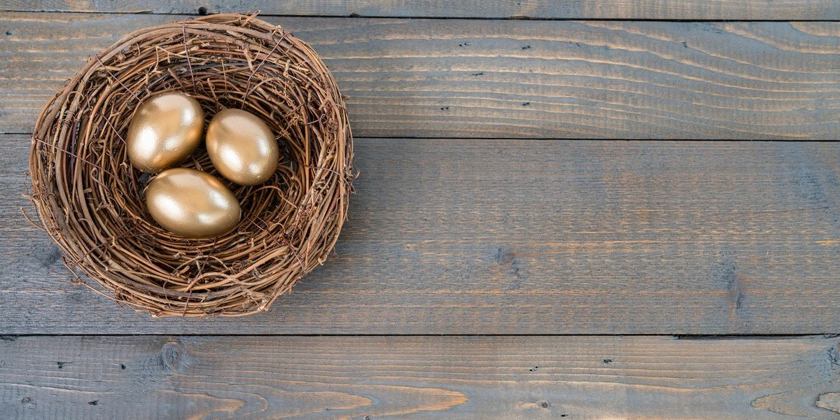 Self Directed IRA For Real Estate | golden eggs