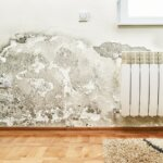 Ultimate Guide to Selling Your House with Mold in CT