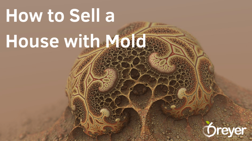 How to Sell a House with Mold Atlanta Marietta Norcross Sandy Springs Roswell Lawrenceville Lithonia Stone Mountain Decatur GA Georgia