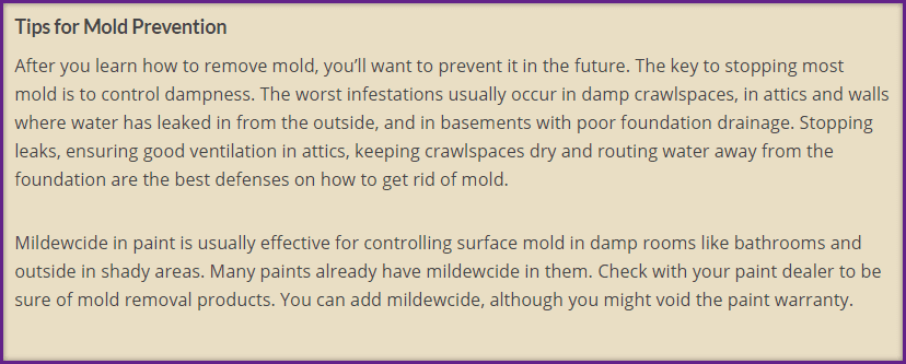 tips on how to prevent mold in my home Stinky Reasons Your Home Isn't Selling