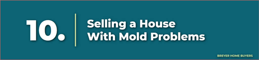 selling a house with mold problems - can you sell a house with mold - how to sell a fixer upper house - selling a fixer upper