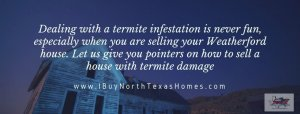 Sell A House With Termite Damage