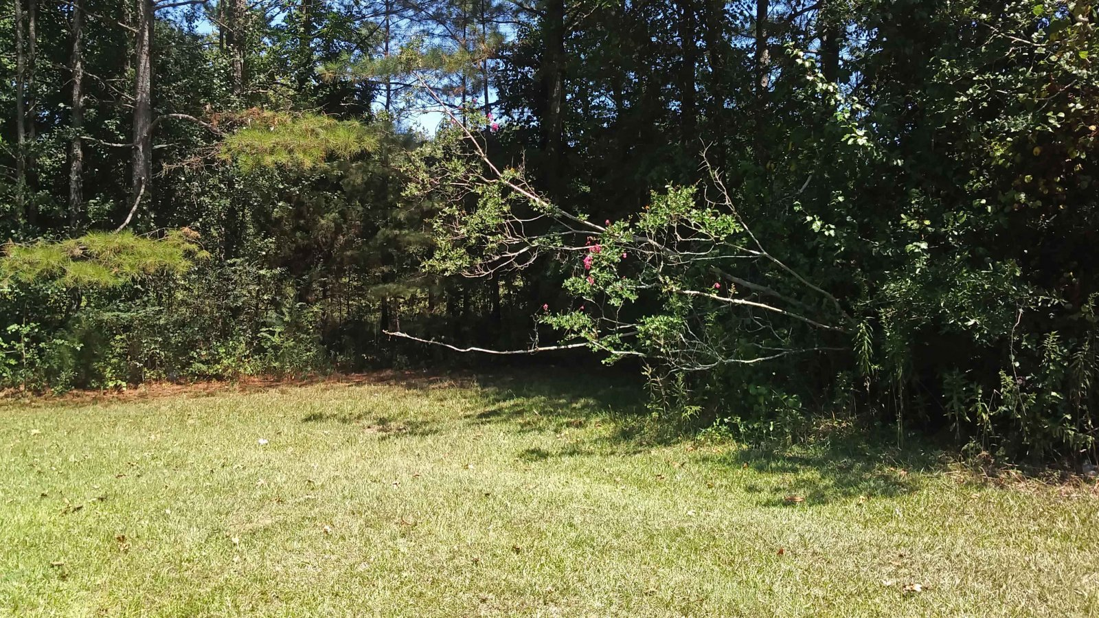 Off Market Lot in Austell