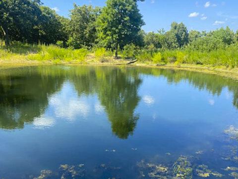 N Cincinnati Ave - pond