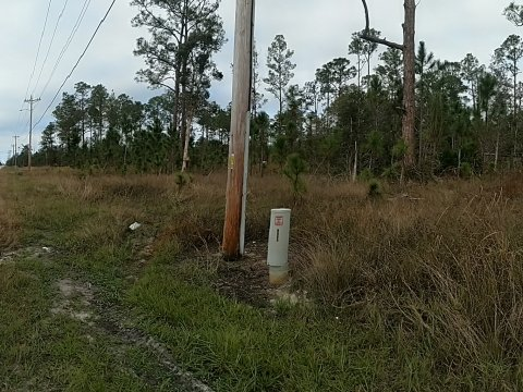 Buildable Lehigh Acres Lot Available Now!!!