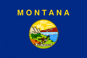 sell montana land fast