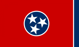 sell tennessee land fast