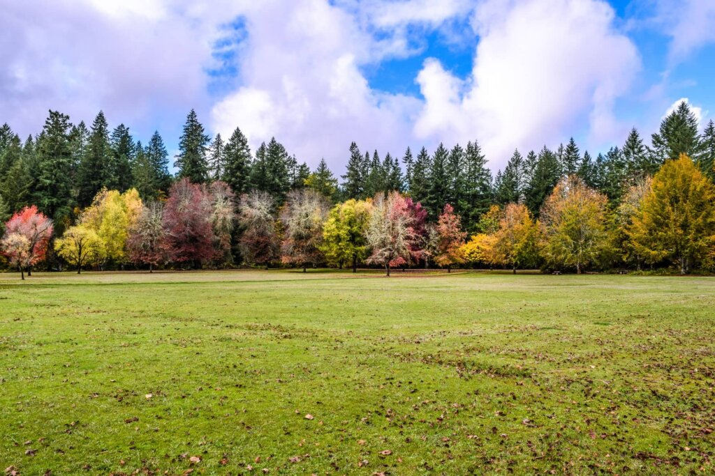 How To Decide Whether To Sell Or Keep Your Inherited Property In Oregon