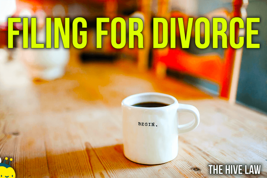 File For Divorce In Georgia - Filing For Divorce In Georgia - Divorce Filing Georgia - How to File For A Divorce in Georgia