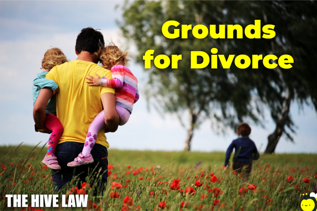 What Grounds For Divorce - What Is Grounds For Divorce - 13 Grounds for Divorce In Georgia - Grounds For Divorce Georgia - What Are Grounds For Divorce - Grounds For Divorce In Georgia