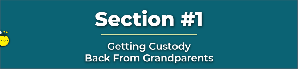 regaining custody of a child from a grandparent - how to get back custody of your child - grandparents legal right