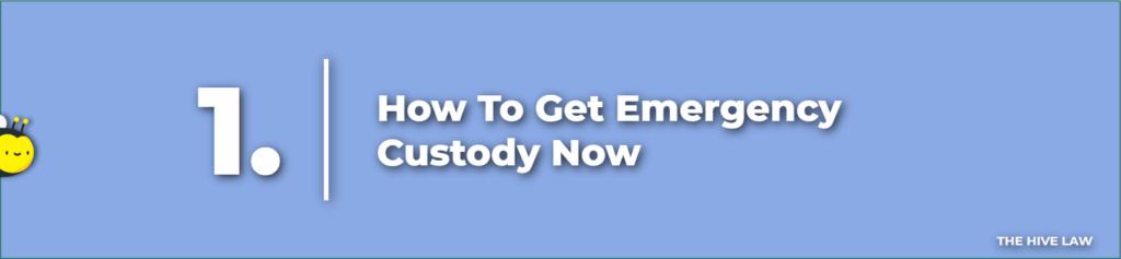 filing for emergency custody - Emergency Custody - Emergency Temporary Custody - emergency petition for custody