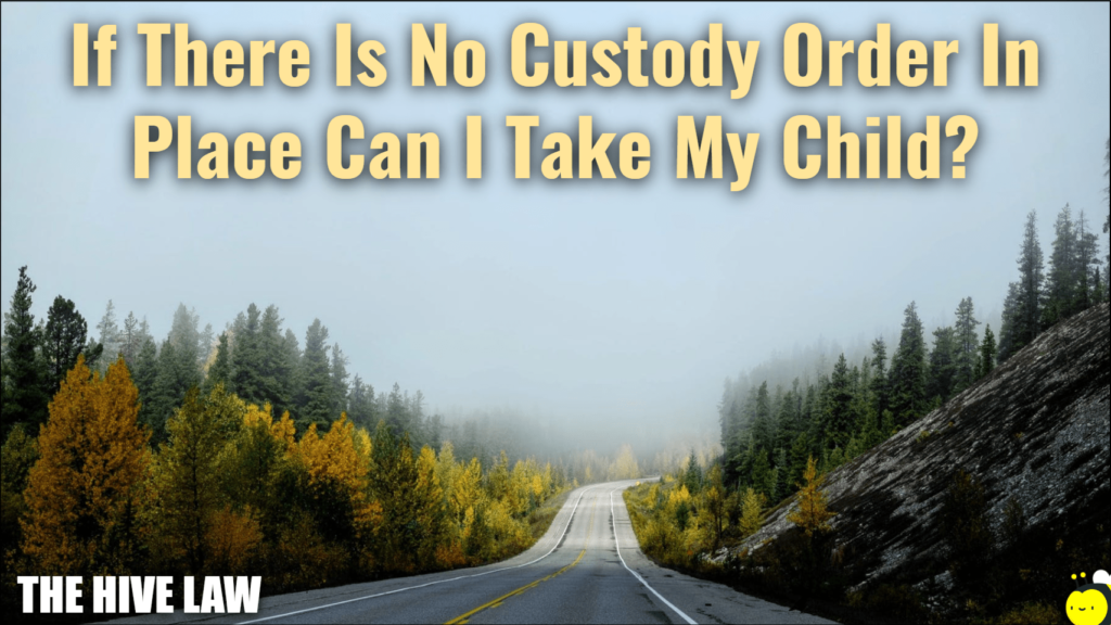 if there is no custody order in place can i take my child - moving out of state with child no custody agreement