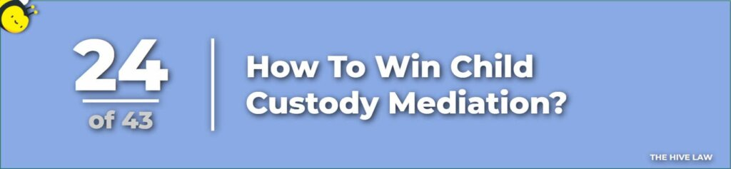 How To Win Child Custody Mediation - How To Prepare For Child Custody Mediation - what to ask a divorce lawyer