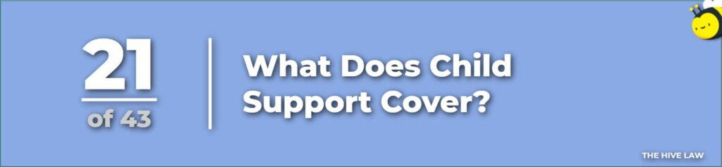 What Does Child Support Cover - When Does Child Support End - What Do Judges Look For In Child Custody Cases