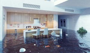 Water Damaged Home