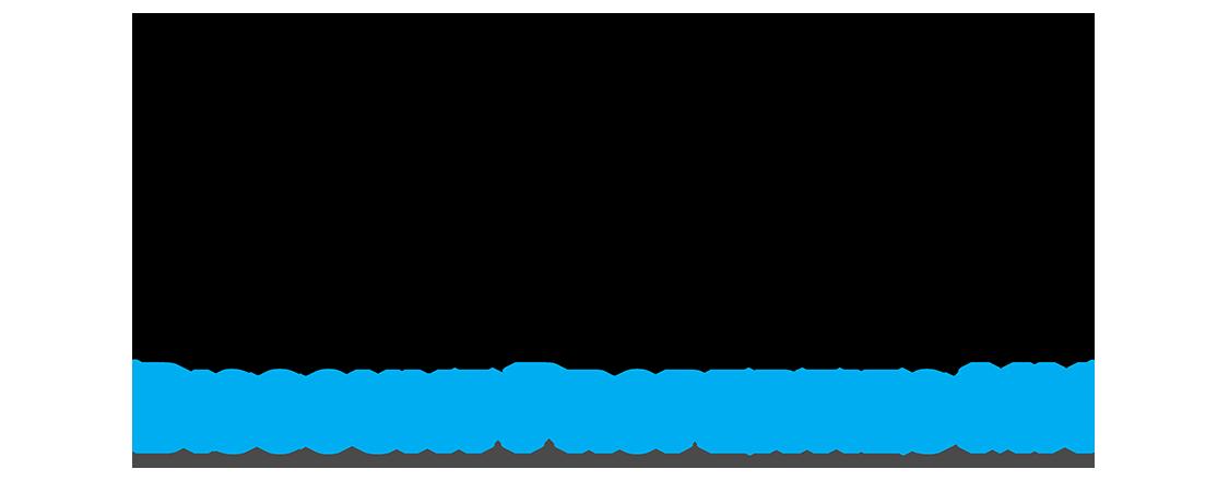 Discount Properties MN logo