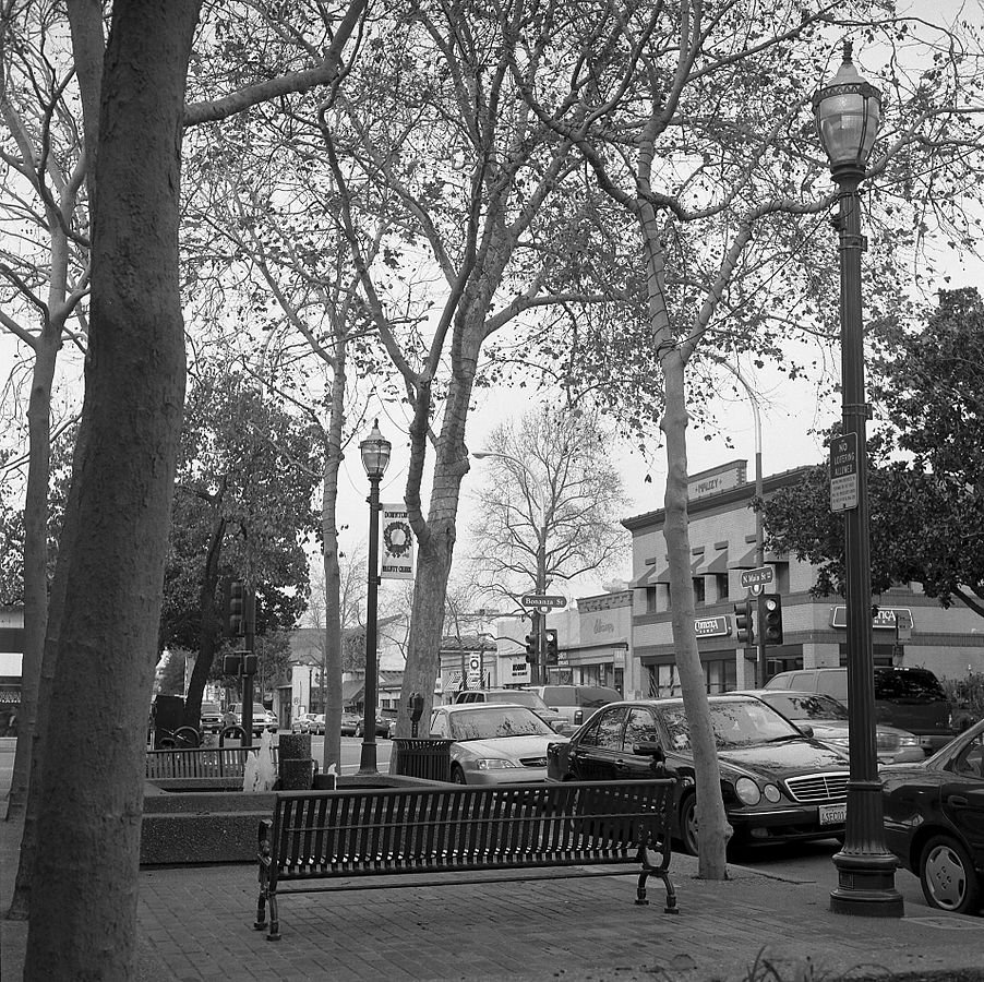a picture of a street and park in Walnut Creek California