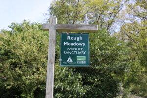 Rowley Rough Meadows