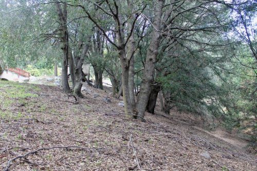 Land For Sale In Chino California - Sell Land in California