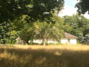 Overgrown house - satisfied home sellers in Massachusetts should leave a testimonial with us to help others!