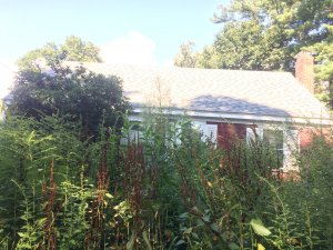 "Seller of this overgrown house may be thinking ""Who buys houses fast in Rockport?"""
