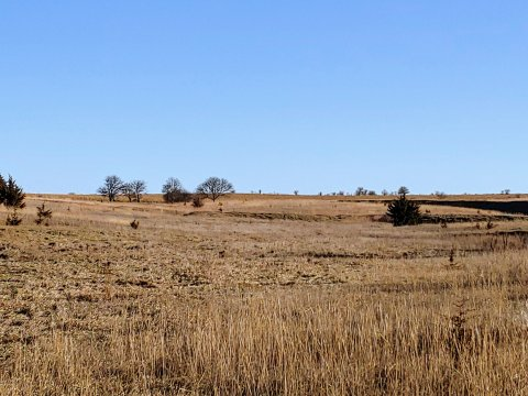 Osborne County, Kansas Land Auction | State Line Properties