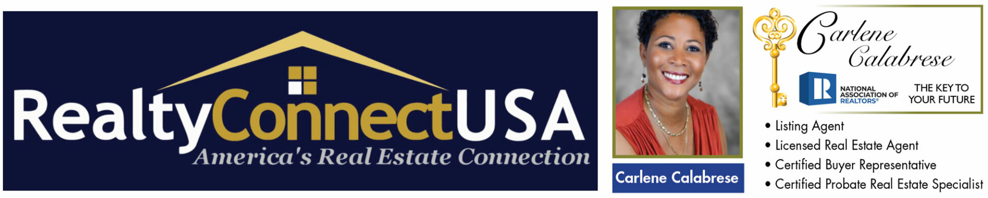 Realty connect USA logo