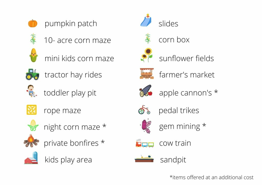 activities offered at Bob's Corn maze and pumpkin patch fall festival
