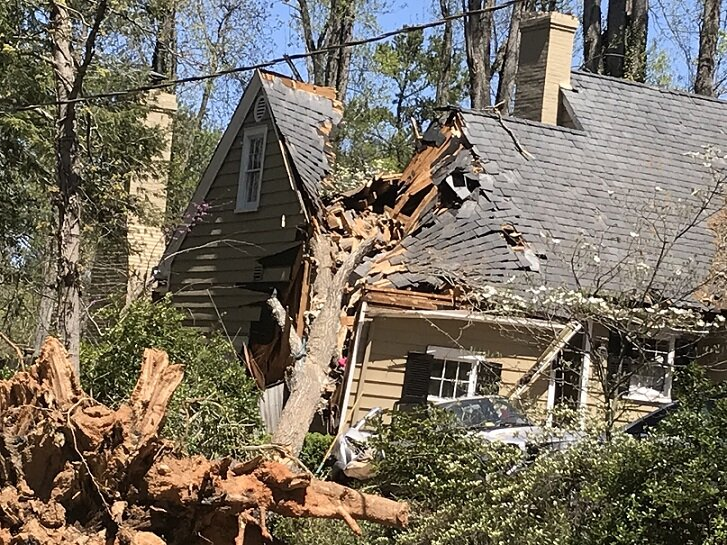 house damaged by a tree