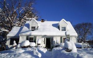 House full of Snow.
