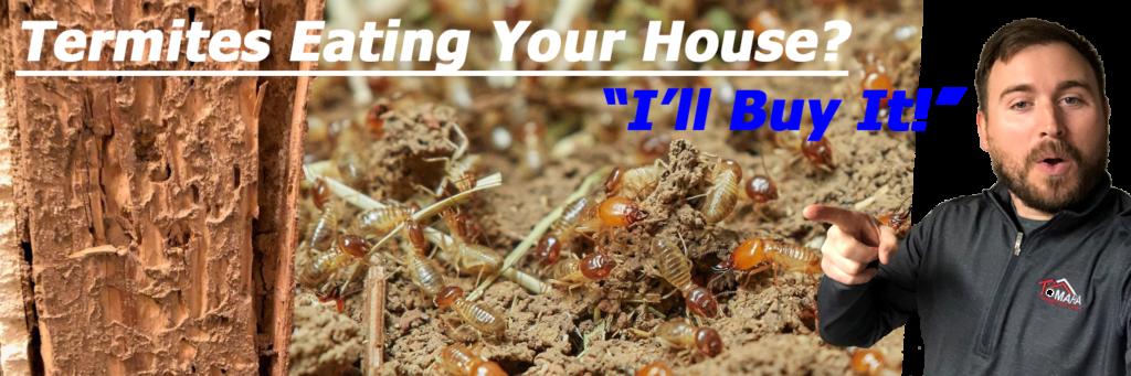 termite damage house omaha