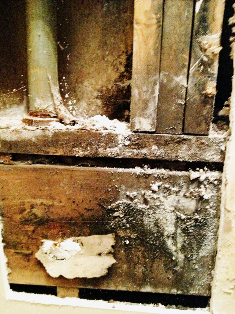 selling a house with mold in omaha nebraska