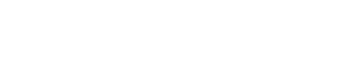 Minnesota Home Brothers logo