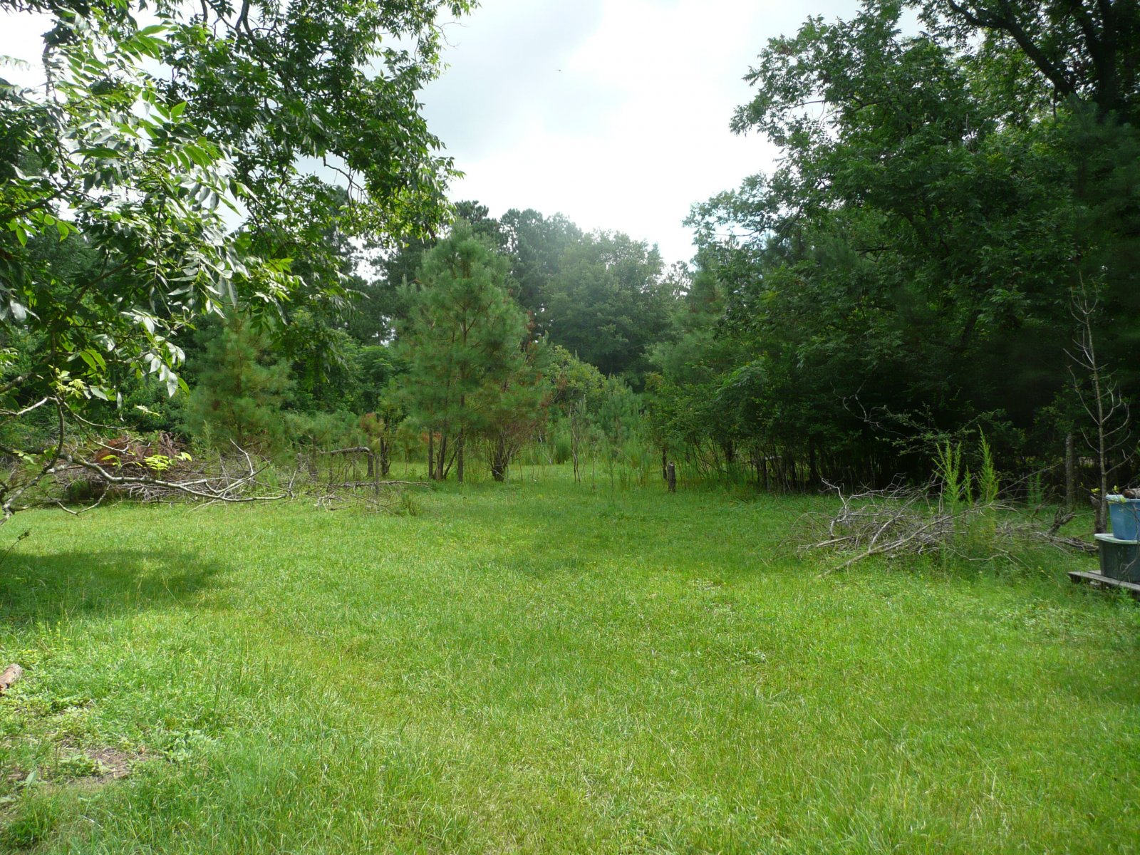 Mobile home for sale in Salley SC with lots of land on 2.9 acres