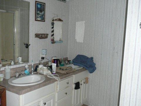 Sink area across from shower in master bathroom