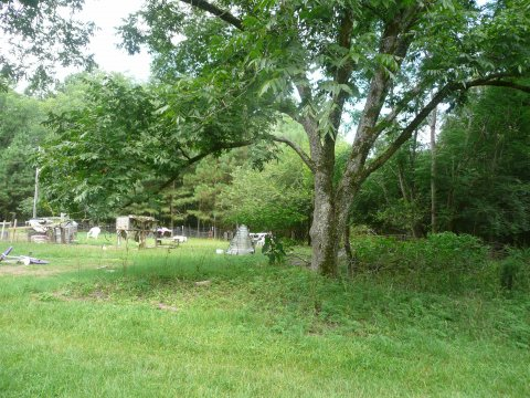 Double wide mobile home for sale in Salley SC on 2.9 acres. Lots of land.