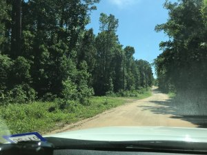 Land For Sale In Florida - Sell Land in Florida - Foster RE LLC