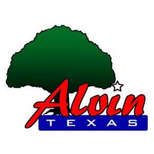 Sell my house fast in Alvin Texas