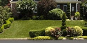Invest In A Lush Lawn In League City TX