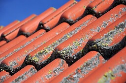 Clean Roof in Baytown, Texas