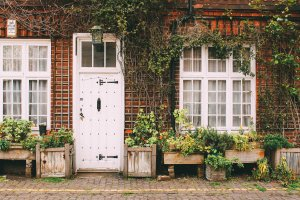 Quaint Home with Ivy and Front Door
