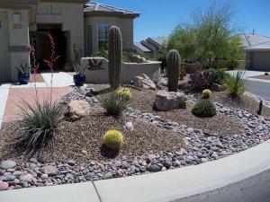 Nice yard in Tucson